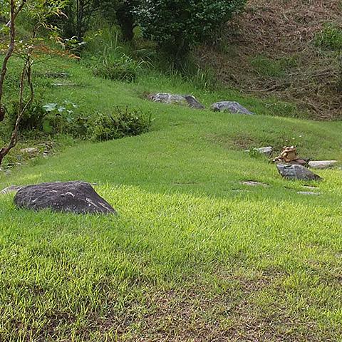 庭づくり 地形