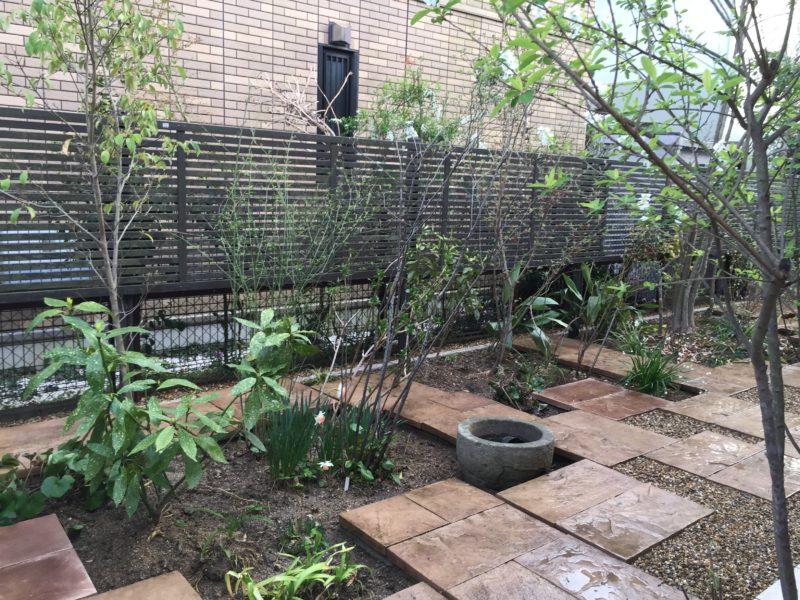土屋作庭所の作庭例 生駒市Y邸